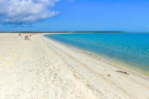 Shell beach vita strand i Shark Bay