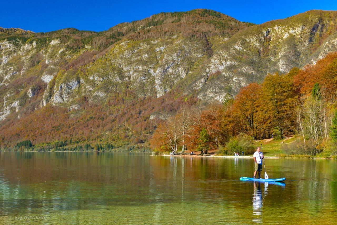 SUP på Lake Bohinj - Slovenien