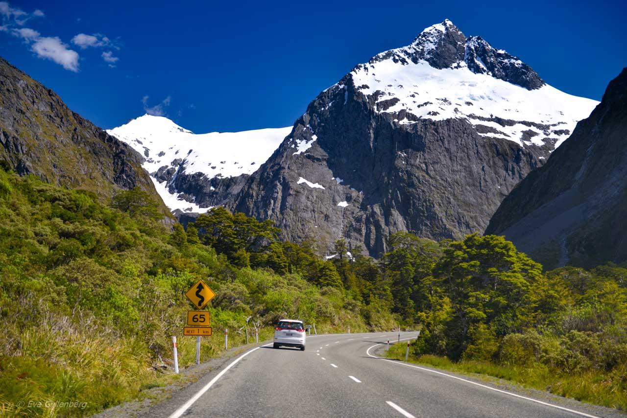 Vägen till Milford Sound är kantad av snöklädda berg