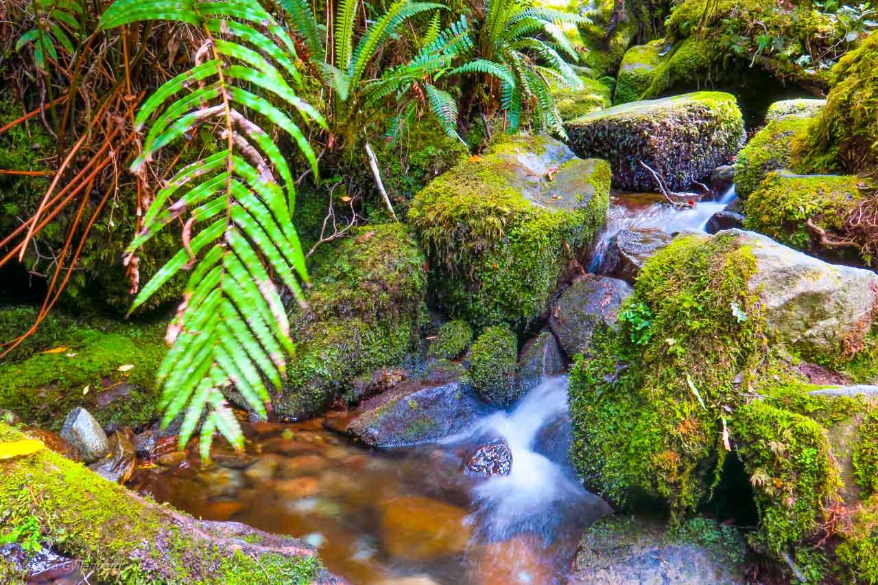 LItet vattenfall på vägen till Milford Sound