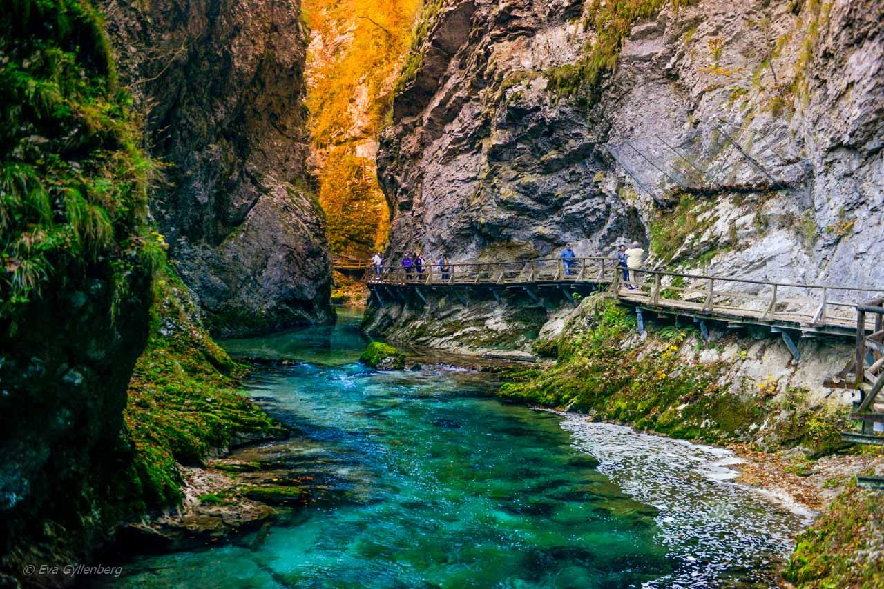 Vintgar Gorge - Vandra i ravinen med de stora vyerna 22