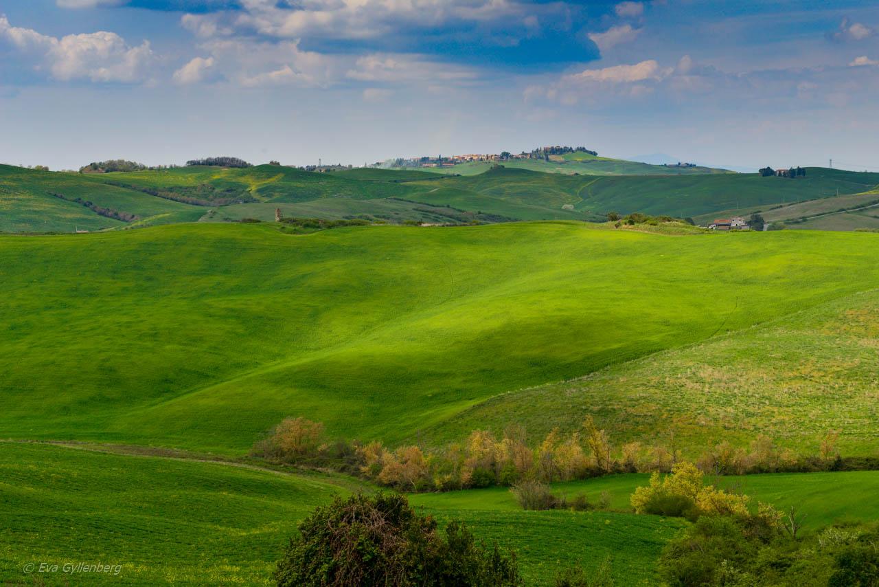 Gröna Toscana i Italien