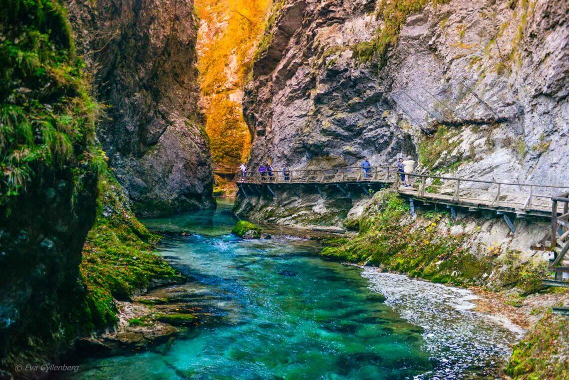 Vintgar Gorge - Vandra i ravinen med de stora vyerna 1