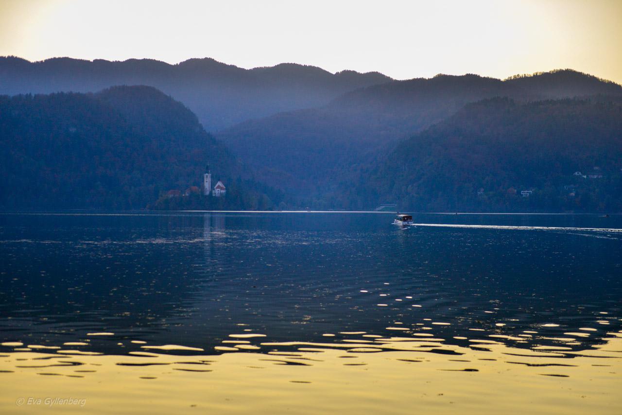 Bled-Bledsjön-Slovenien