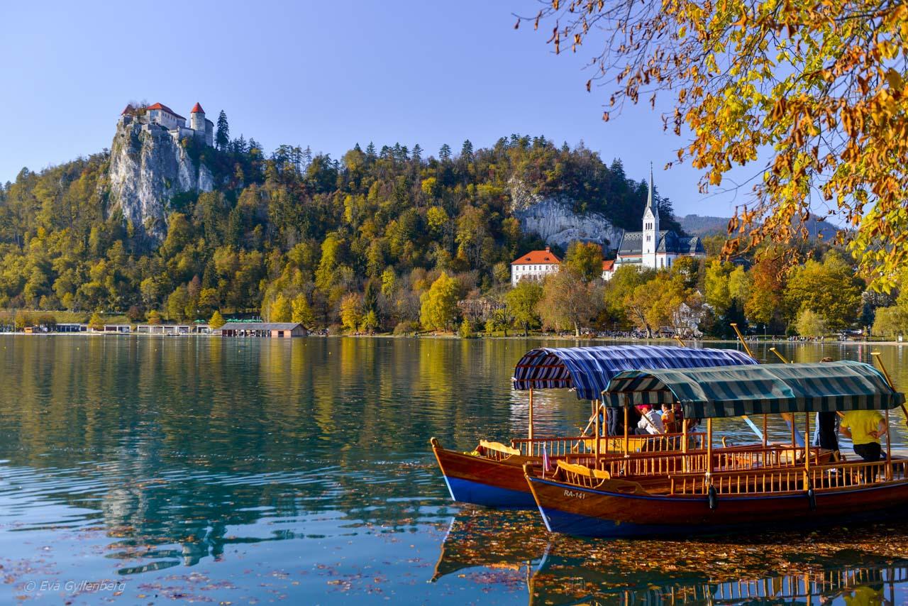 Båtar vid Lake Bled