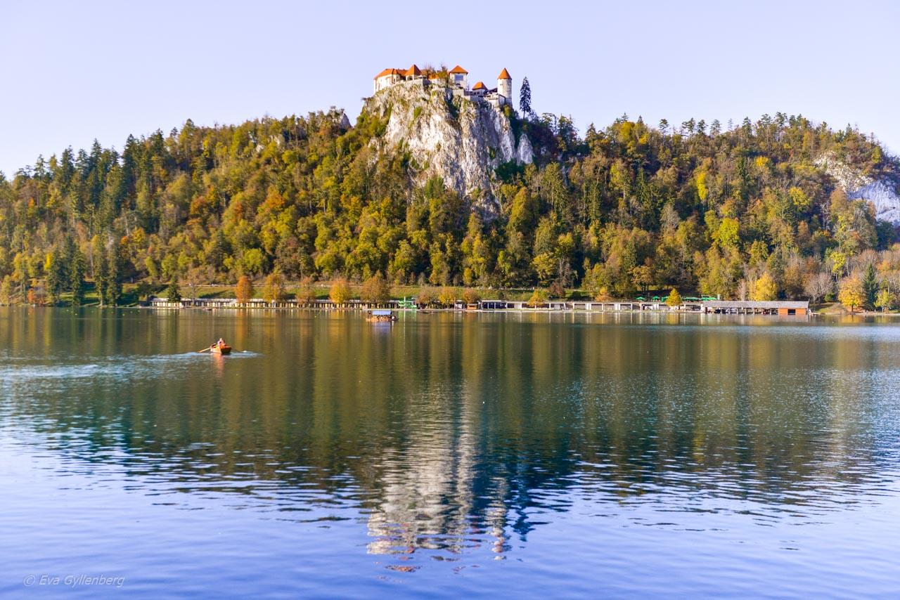 Slottet vid Bledsjön