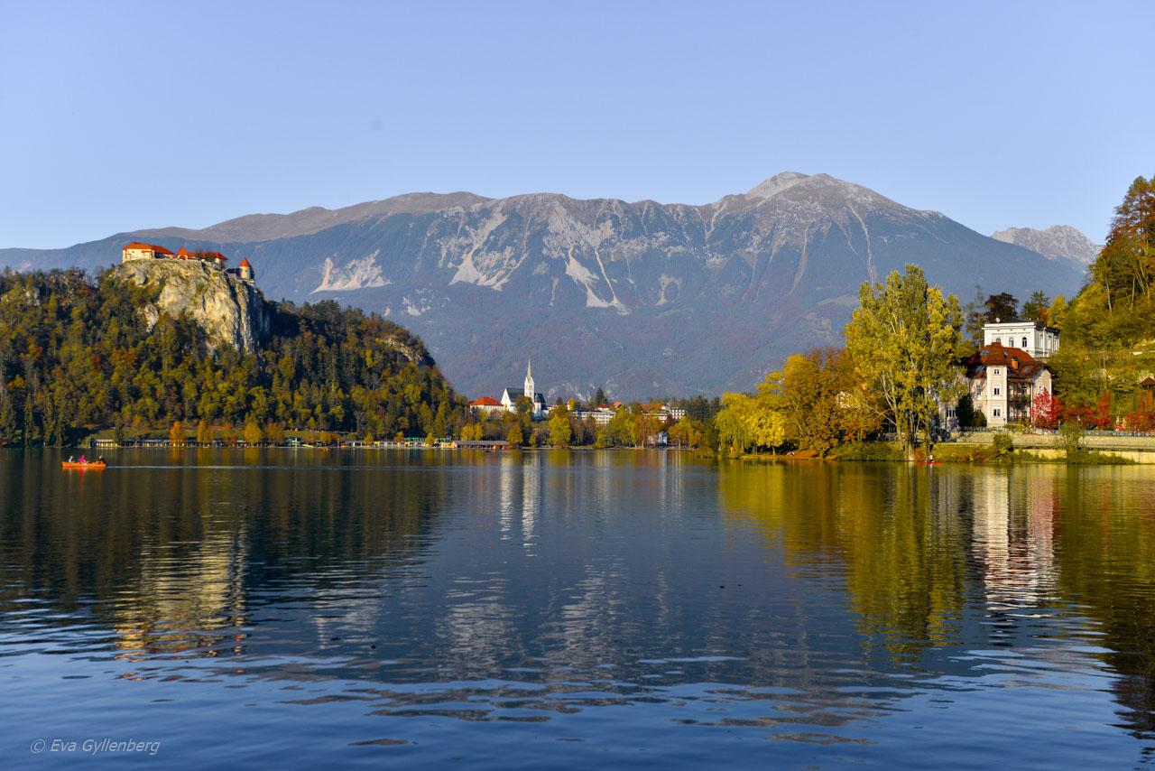 Spegelblank Lake Bled