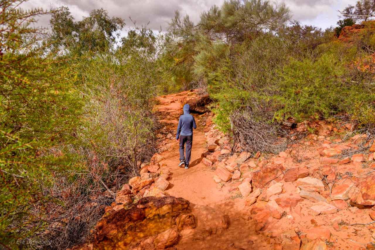 Vandringsled i Kalbarri nationalpark