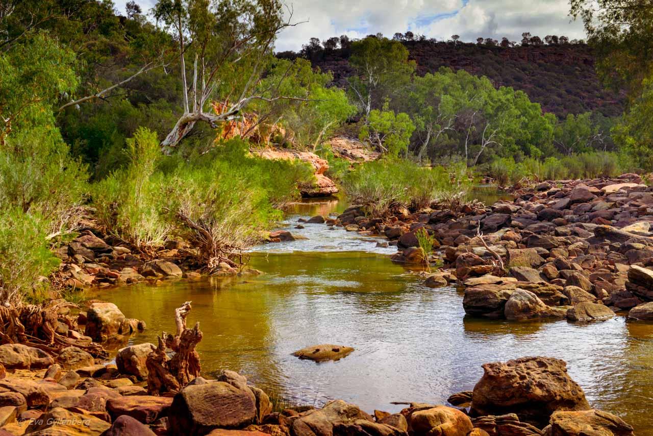 Murchison River i Kalbarri
