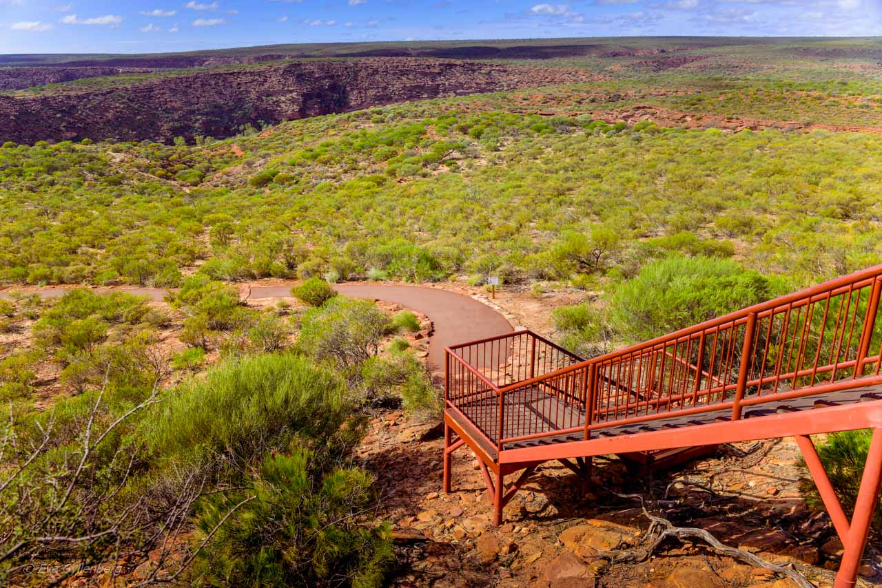 Kalbarri Nationalpark - Röda flodraviner och flugor i Western Australia - Del 1 34