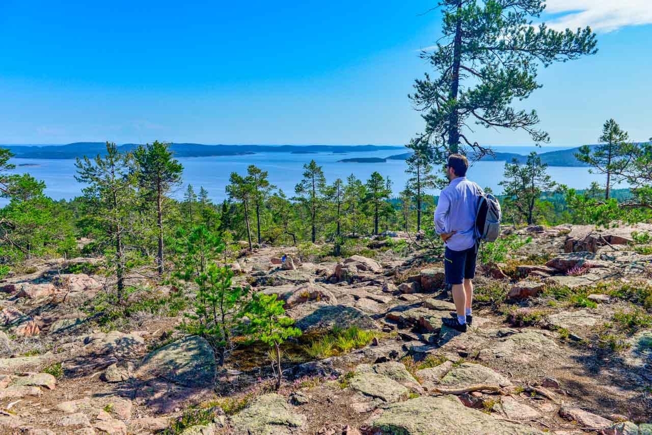 Denna utsikt! Skuleskogen levererar!