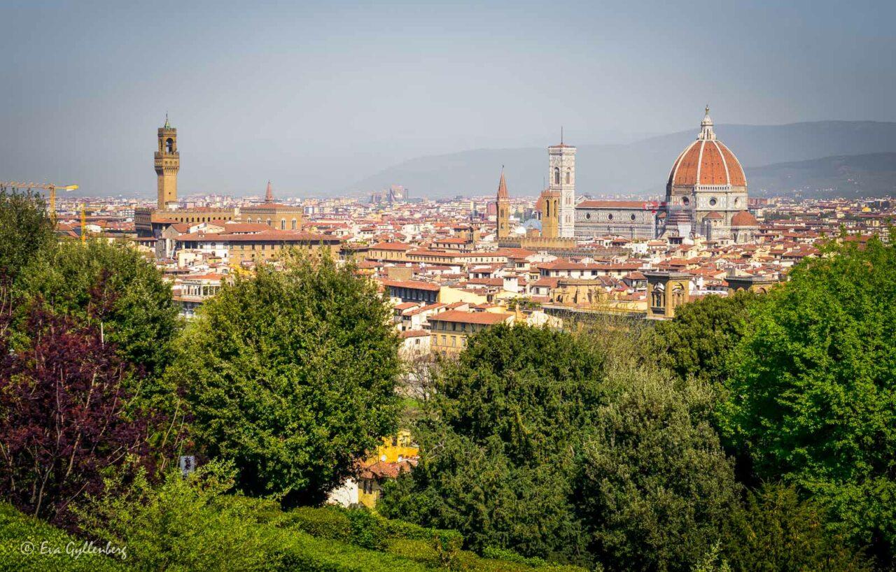Florens - Italien från ovan