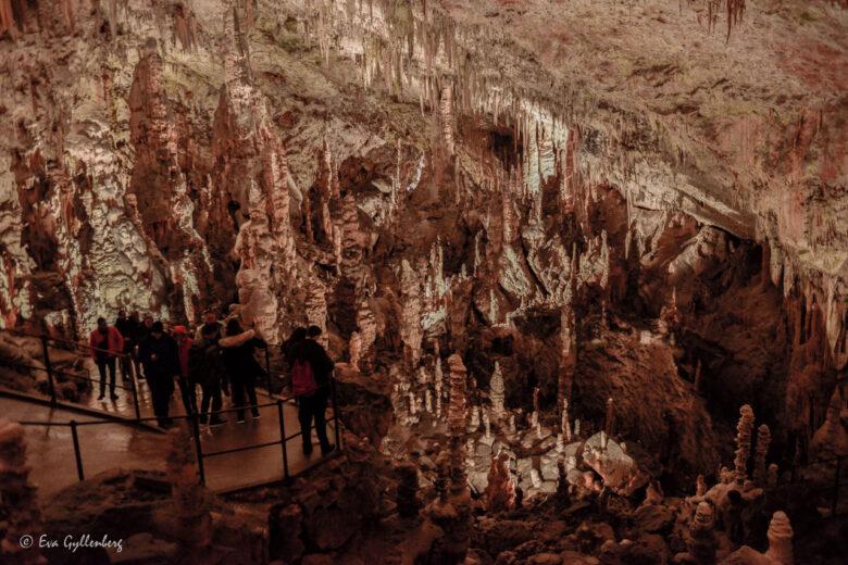 Grottorna Postojna och Skocjan - Sloveniens underbara underjord 24