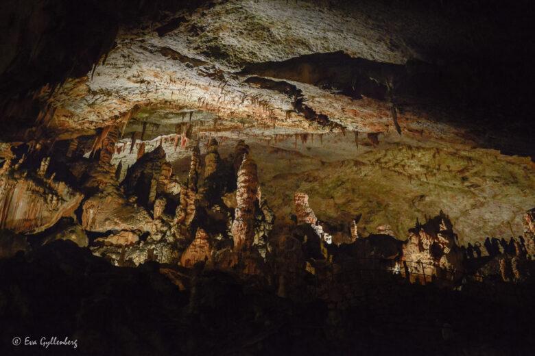 Grottorna Postojna och Skocjan - Sloveniens underbara underjord 18