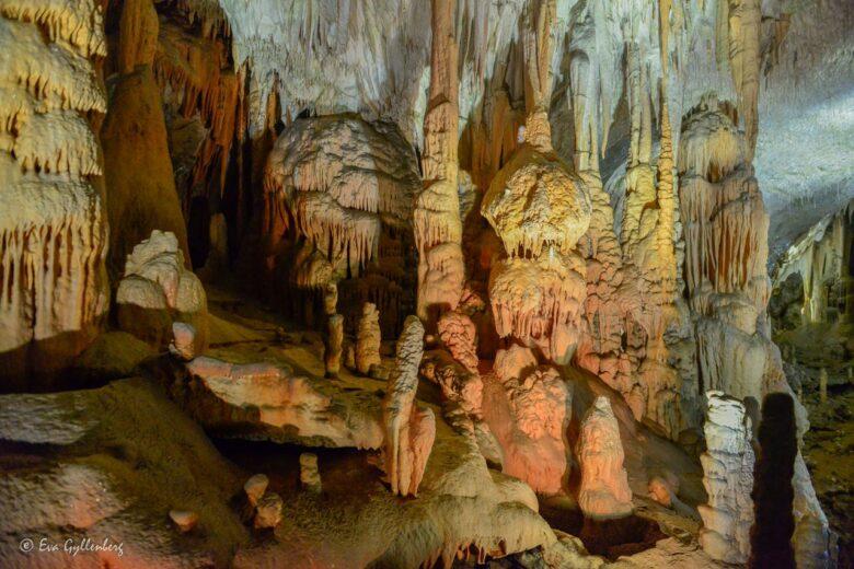 Grottorna Postojna och Skocjan - Sloveniens underbara underjord 14