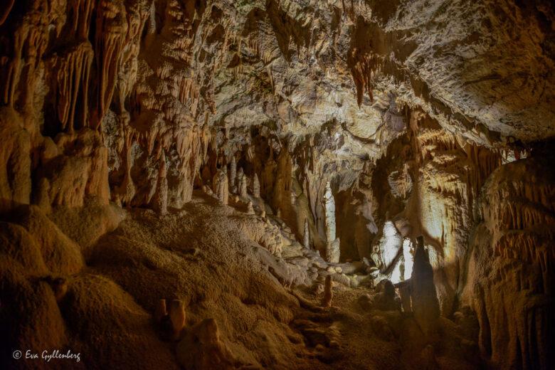 Grottorna Postojna och Skocjan - Sloveniens underbara underjord 22