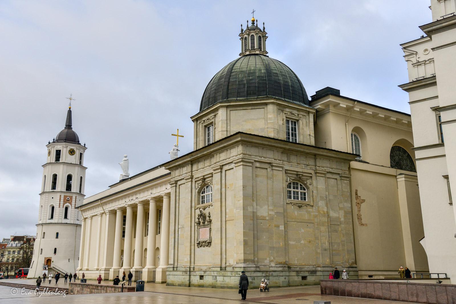 Vilnius-katedral
