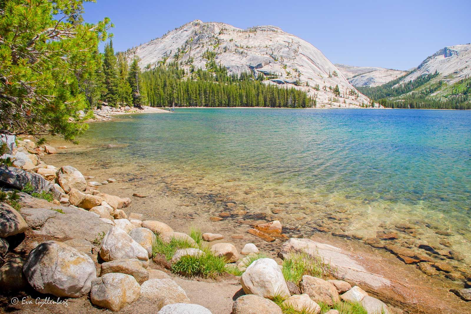 Bildsemester del 1 - Kalifornien i bilder 141