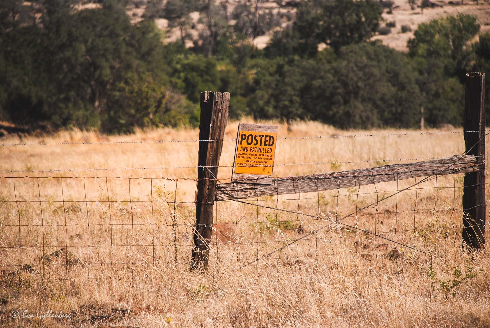 Bildsemester del 1 - Kalifornien i bilder 135