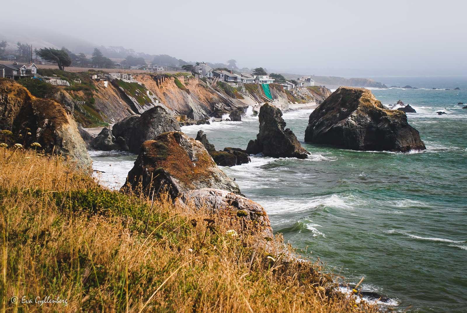 Bildsemester del 1 - Kalifornien i bilder 7