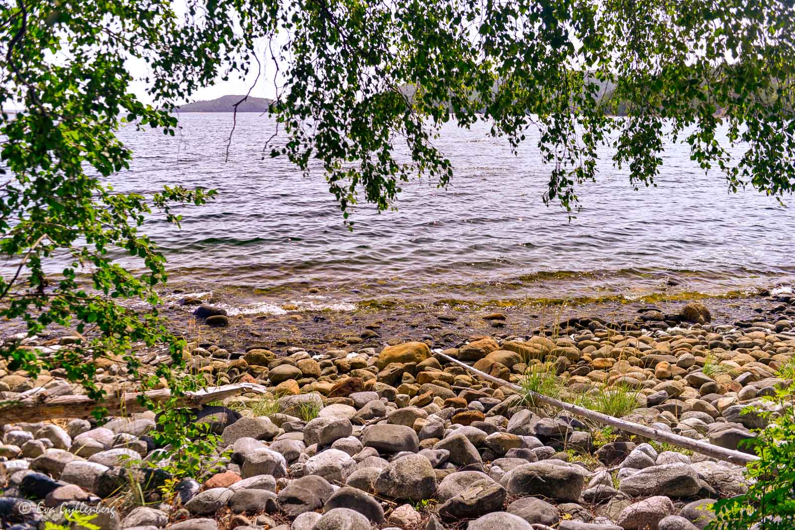 Stenig strand på Balesudden