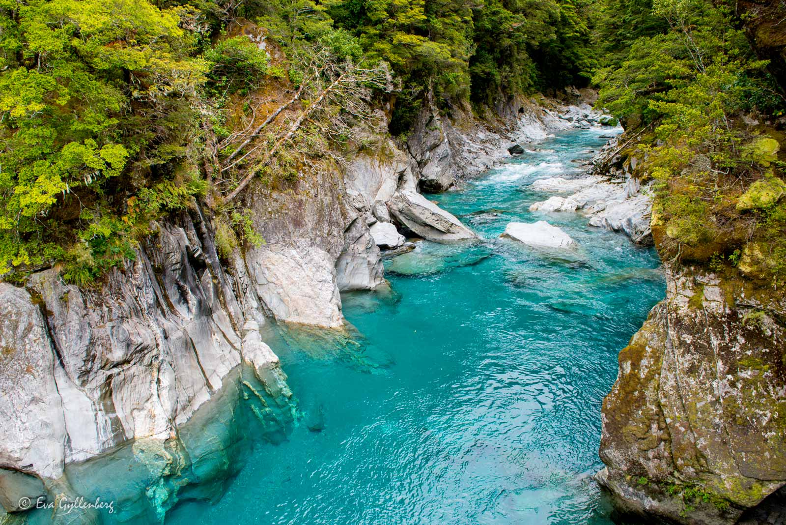 Blue pools magiska vatten i Mount Aspiring