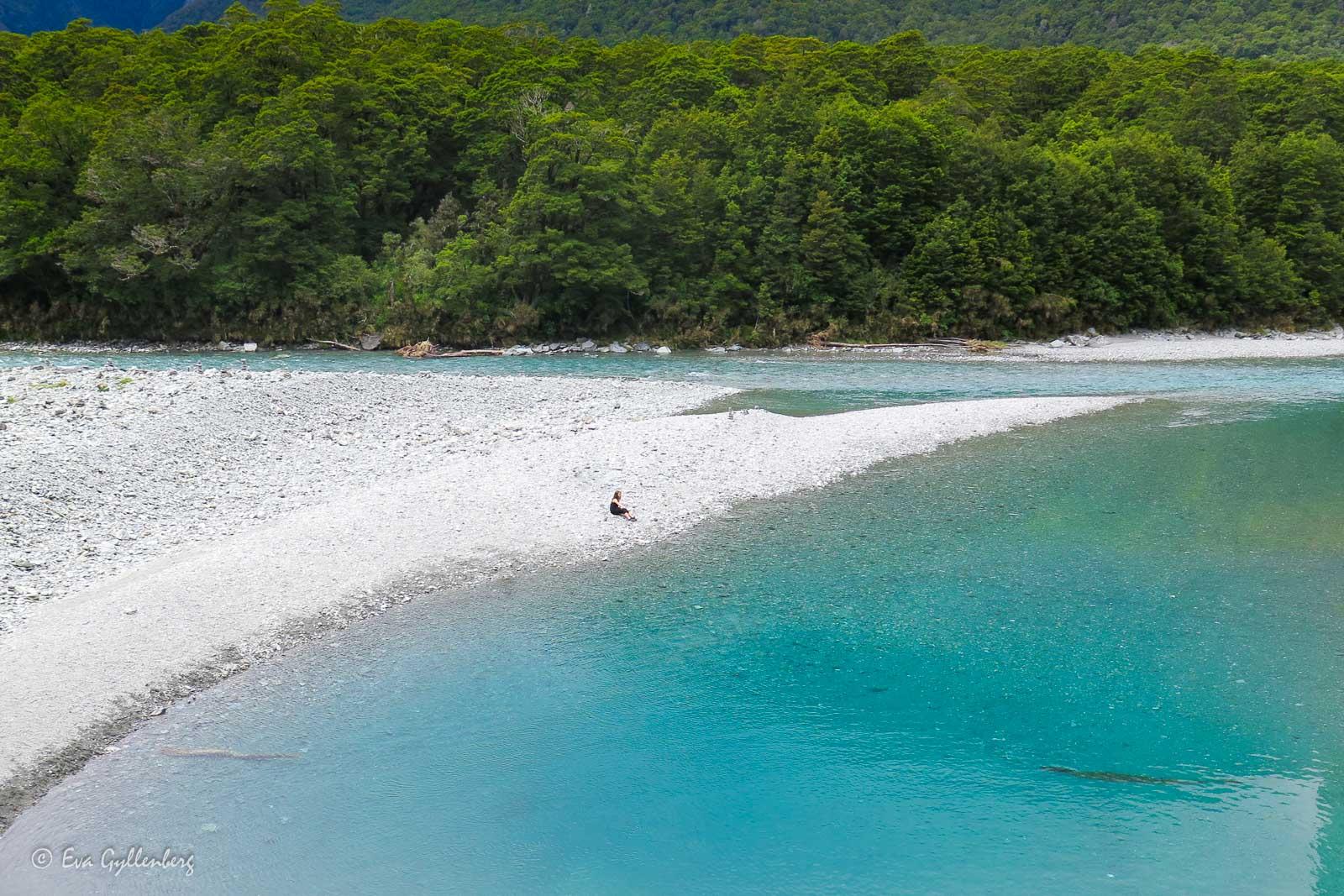 En egen vit strand på Nya Zeeland