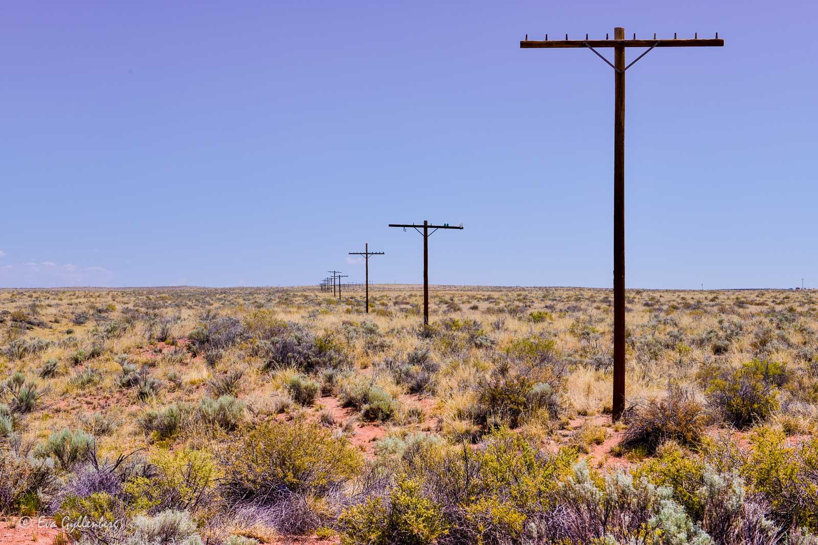 Telefonstolpar i Petrified Forest