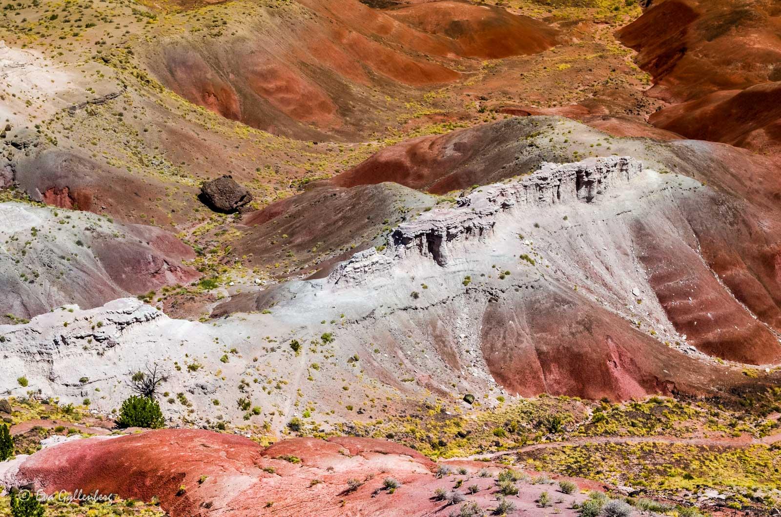 Färgade kullar i Petrified Forest