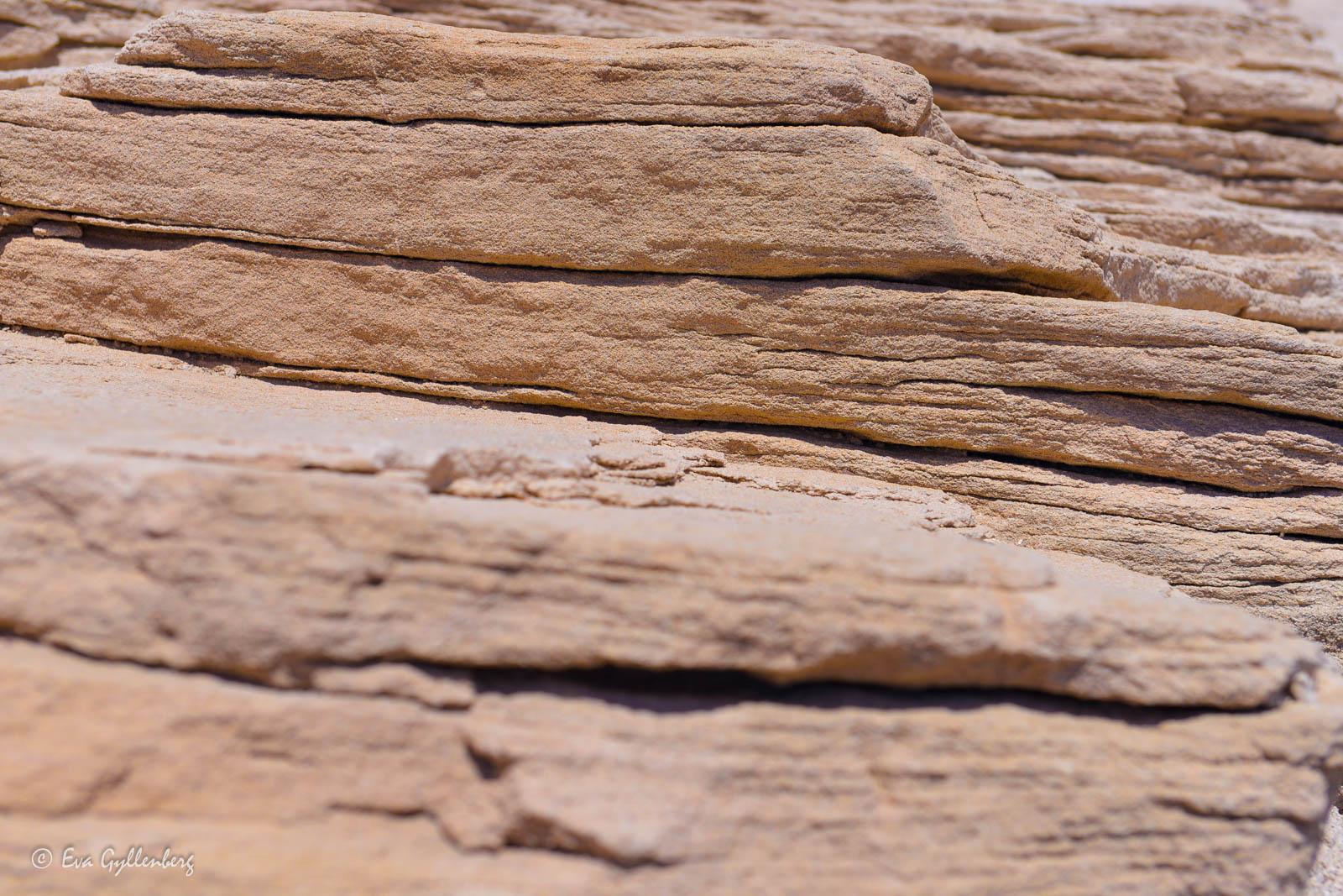 Berggrund i Petrified Forest