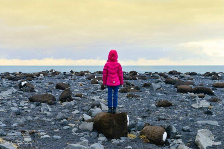 Reynisfjara - Islands farliga svarta strand 23