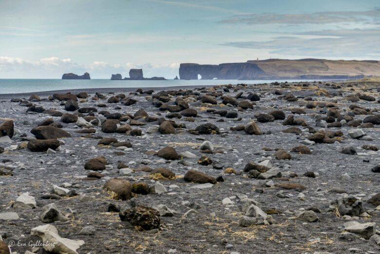 Reynisfjara-Island
