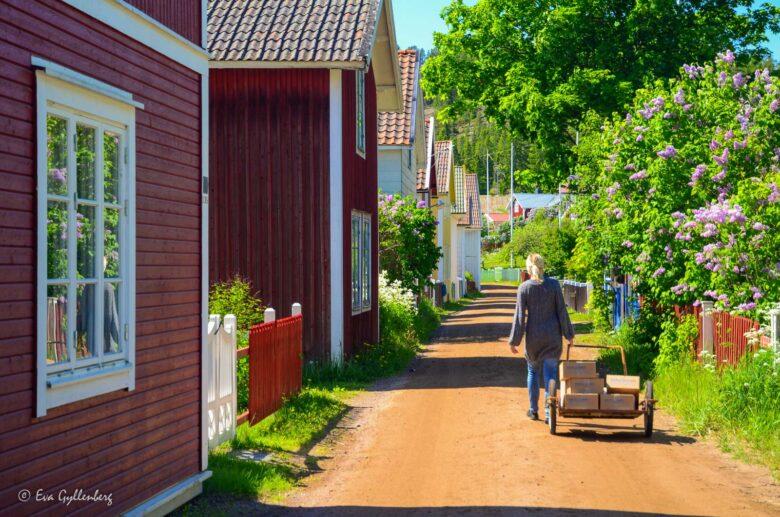 Sevärdheter vid Höga kusten - Mina 7 favoriter kring Örnsköldsvik 22