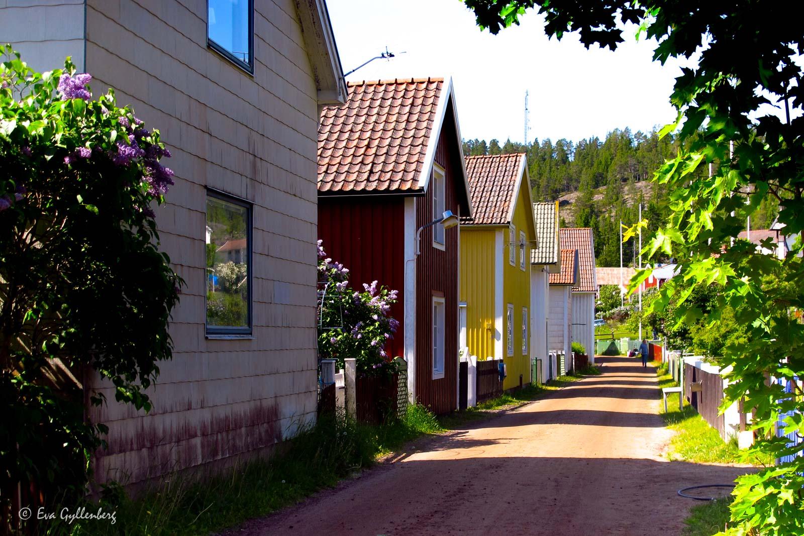 Bilfria gator på Ulvön