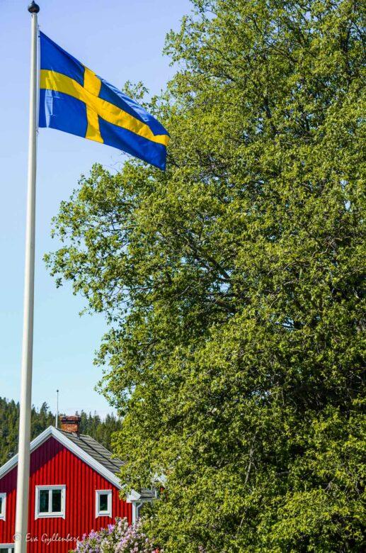 Flaggor och röda hus på Ulvön