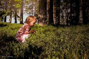 Familjevandringar kring Stockholm - Mina 5 favoriter 17
