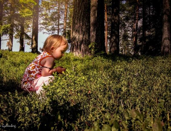 Familjevandringar kring Stockholm - Mina 5 favoriter 2