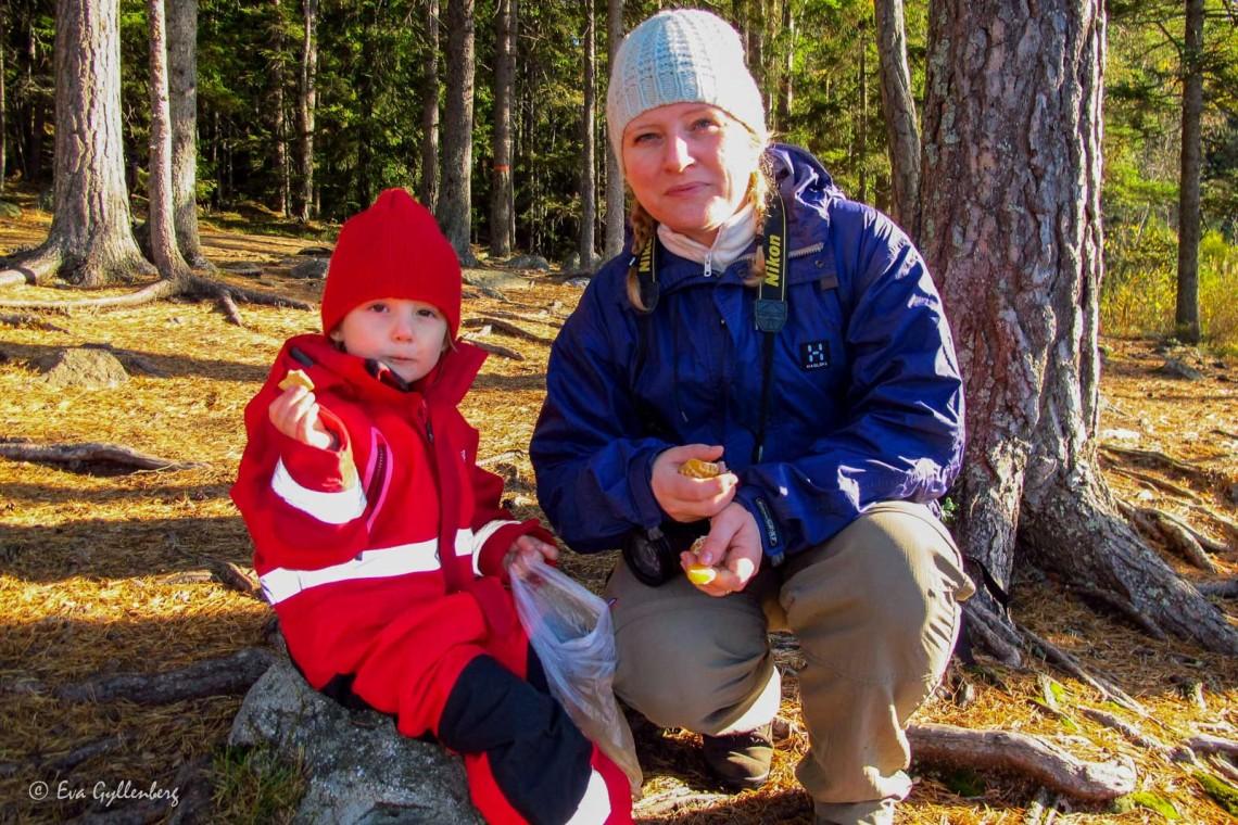 Familjevandringar kring Stockholm - Mina 5 favoriter 6
