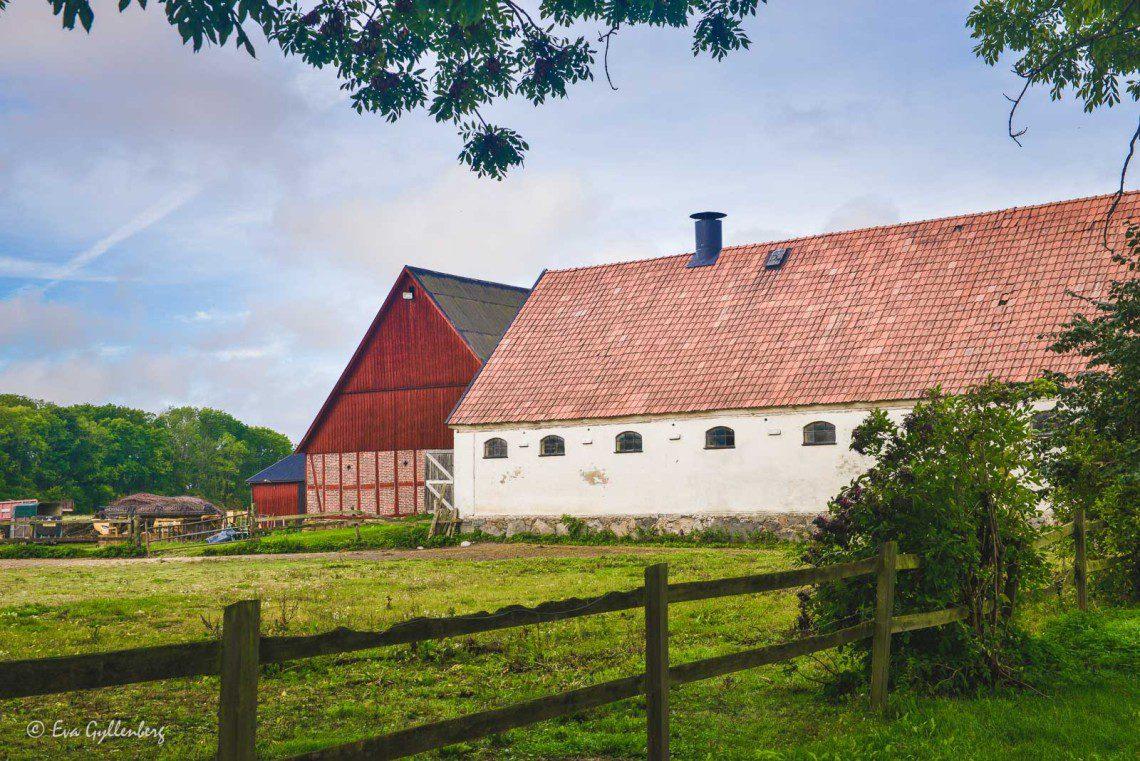 Lillö kungsgård utefter Linnérundan
