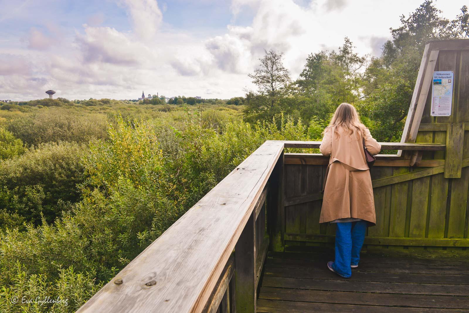 Härlövsborgstornet utefter Linnérundan