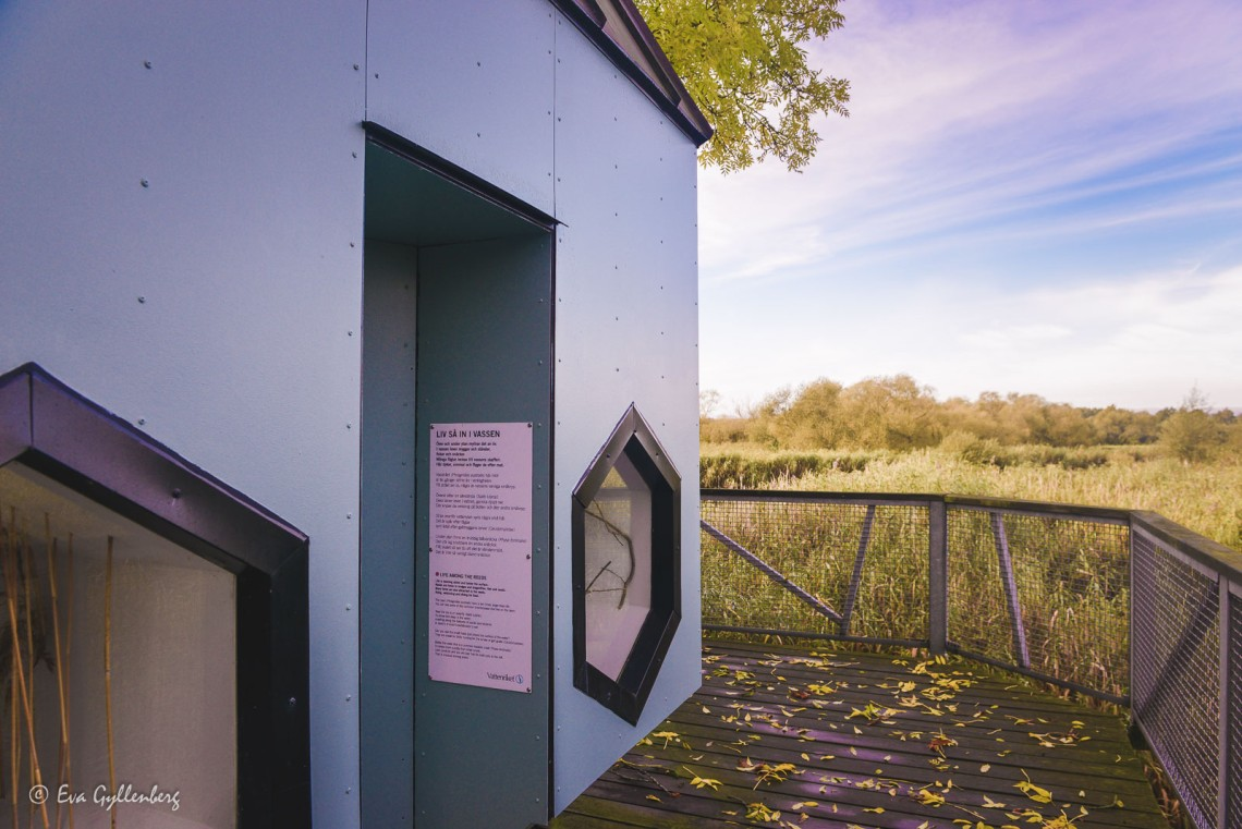 Utomhusmuseum utefter Linnerundan