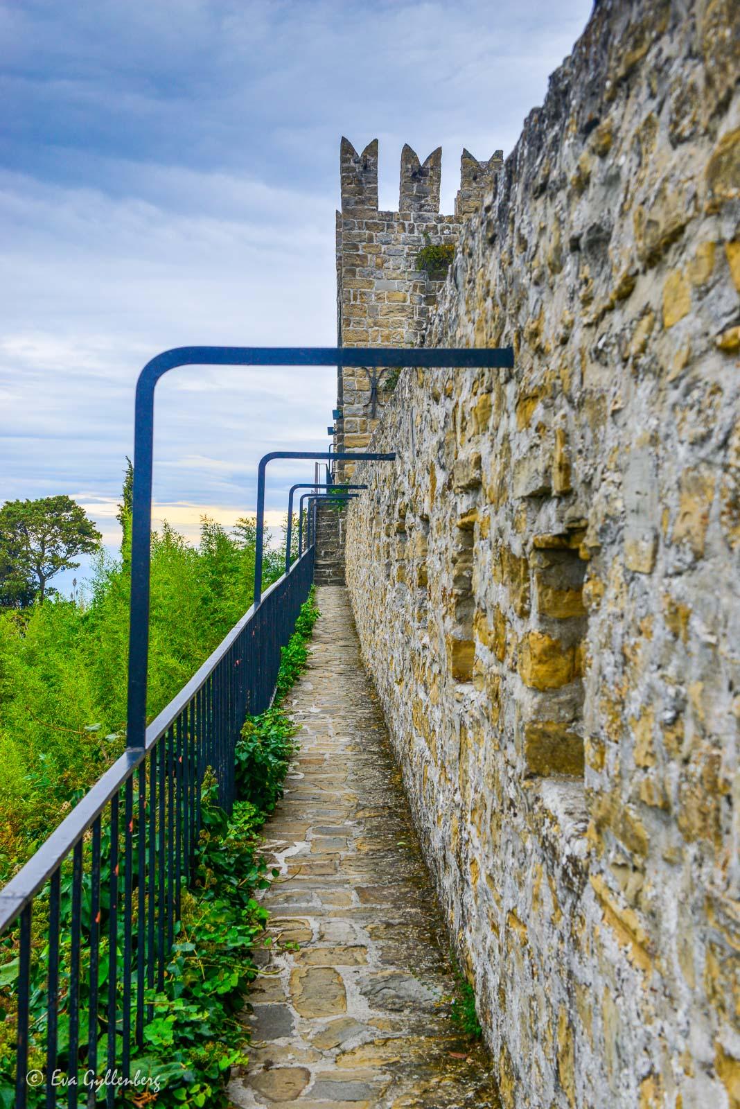 Muren i Piran