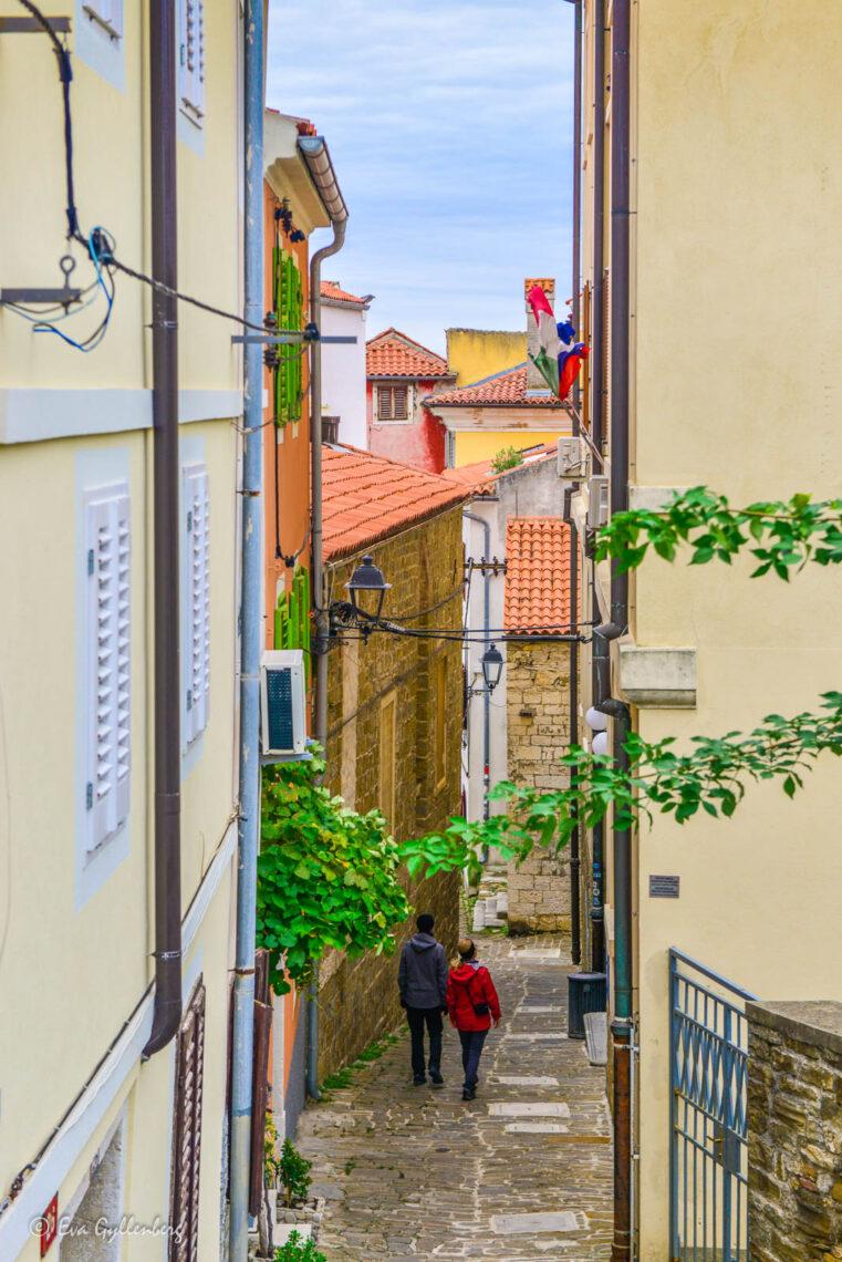 Promenad i Pirans gamla stad