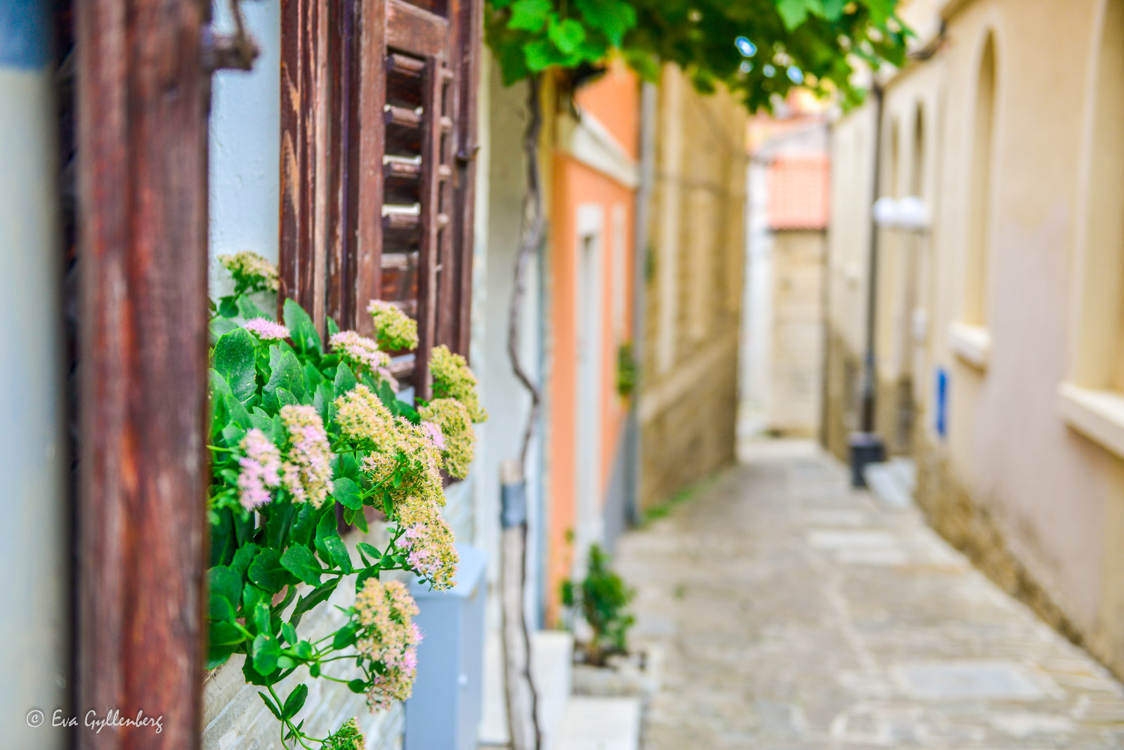 Gata i Pirans gamla stad