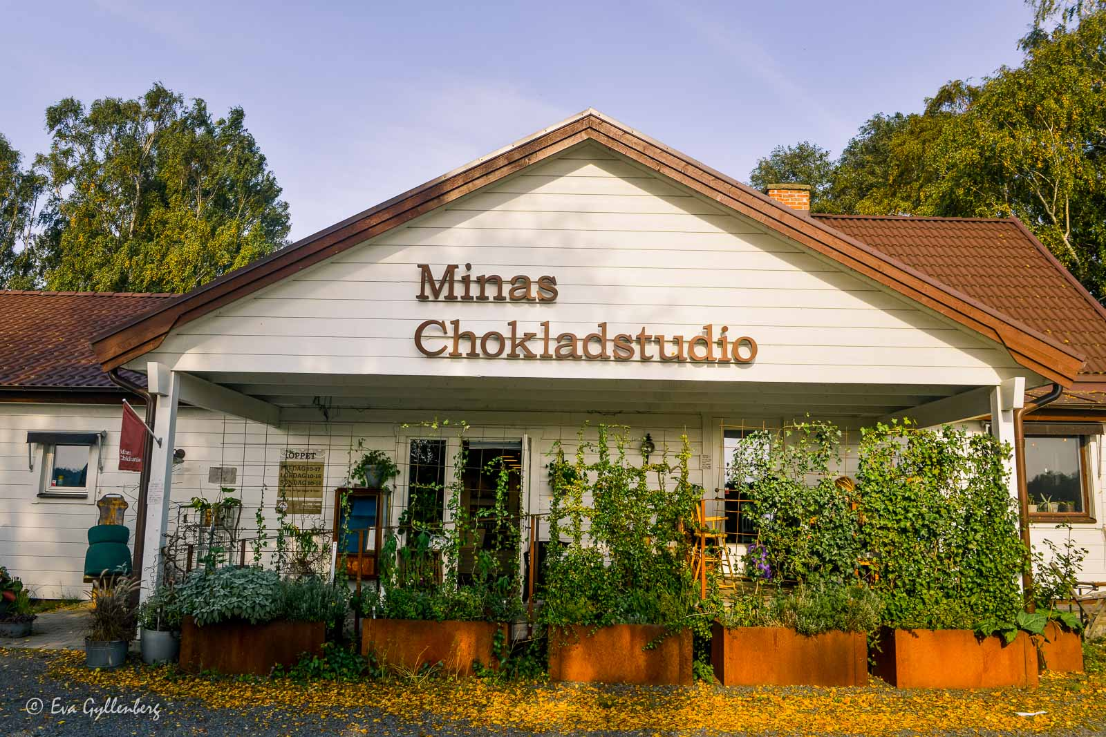 Minas chokladstudio 8