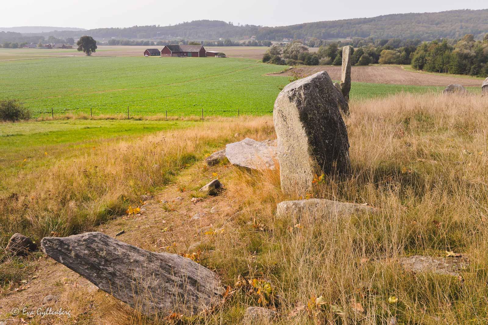 Stenar vid Gudahagen