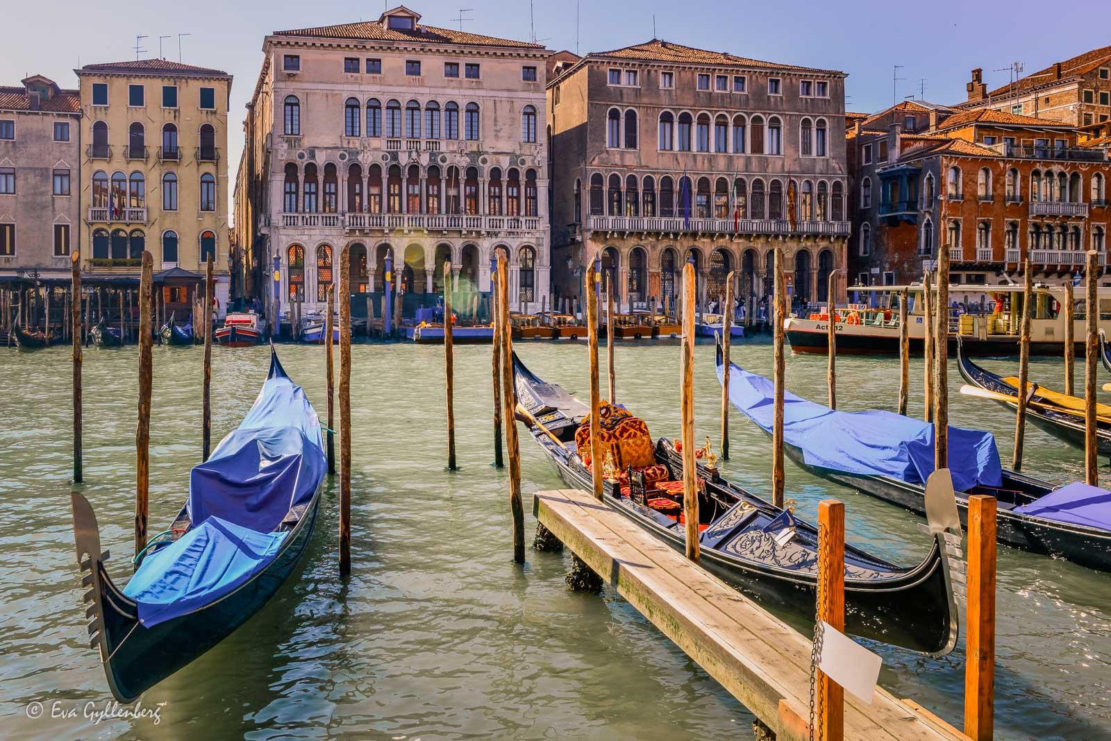 Canal Grande i Venedig