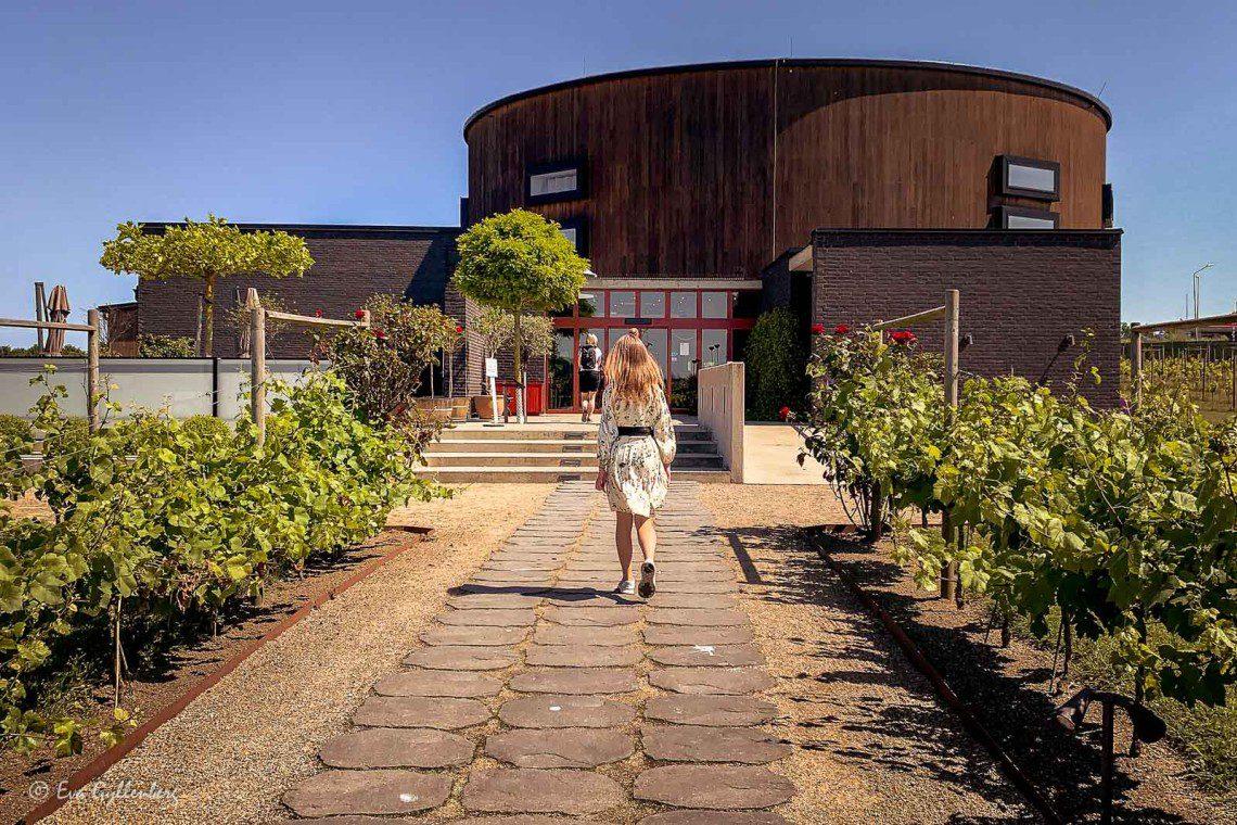 Nordic Sea Winery - Nästan som i Napa Valley 8