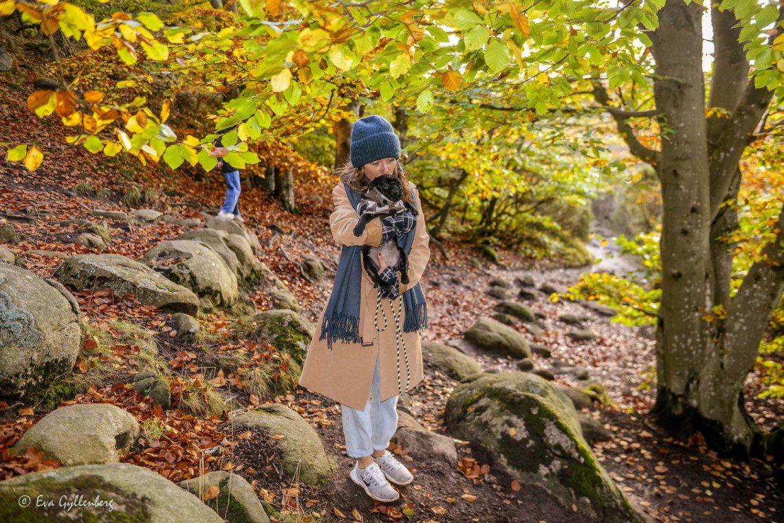 Promenad med hund i Stenshuvud