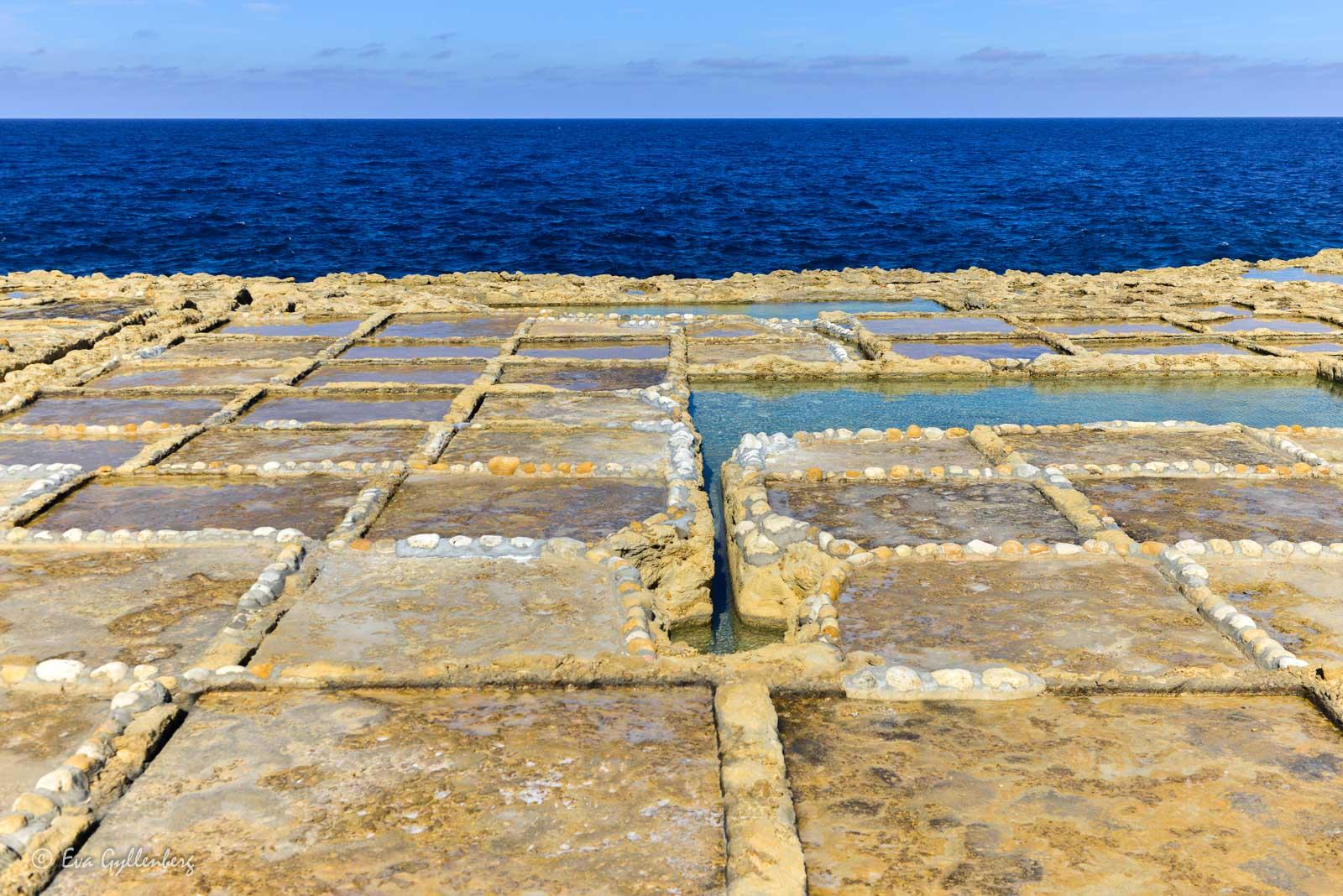 Gozo salt